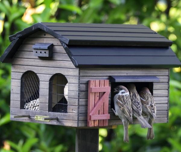 Кормушки из дерева для птиц своими руками фото оригинальные