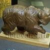Медведи18