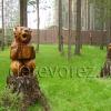 Медведь-5