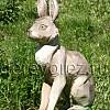 Заяц-1