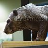 Медведи11