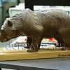 Медведи10