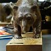 Медведи13